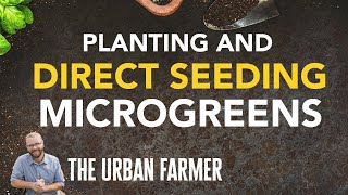 VLOG - 28 - Planting microgreens & Direct seeding