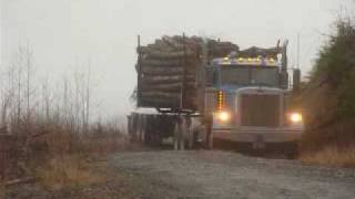 3 and 4 axle logging trailers behind Kenworth and Peterbilt log trucks. AMAZING!