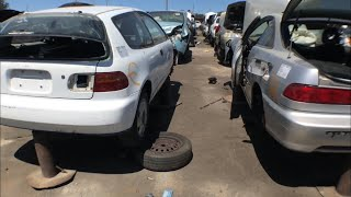 Looking for B18c's at the Junkyard