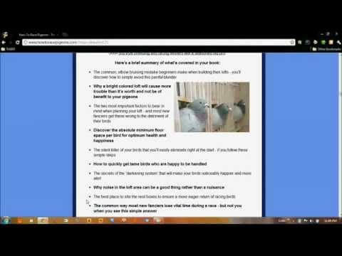 How To Breed,Race,Win And Make Money With Racing Pigeons Review+Bonus