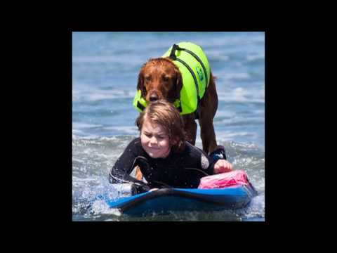 Surf Dog Ricochet surfs with brain injured 6 year old
