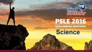 PSLE 2016 (Science) - Challenging Questions Unravelled!