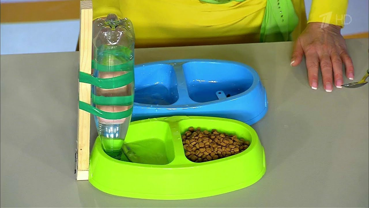 Поилка для кошек своими руками из пластиковой бутылки 93