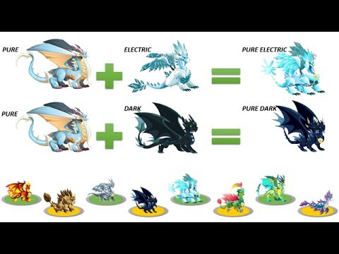 How To Breed Pure Hybrid Dragon In Dragon City