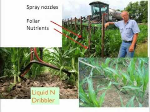 Matching A Fertility Program To Your Farm Soil's Biology: Webinar Replay