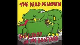 Watch Dead Milkmen Spit Sink video
