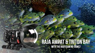 Raja Ampat and Triton Bay, Indonesia filmed in 8K with RED Weapon Helium and Nauticam Weapon LT