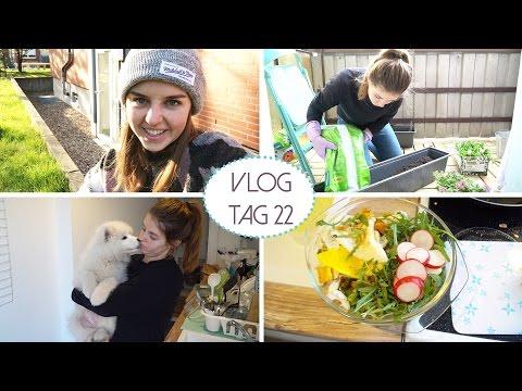 Balkon gestalten, Pancakes und Rummotzen - Daily Vlog #22 | Lovethecosmetics