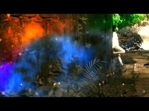 download lagu Zeffan - Dame Nangroe gratis