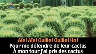 Les Cactus 39 39 Jacques Dutronc 39 39