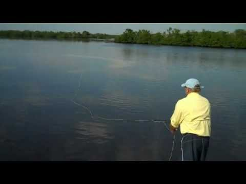 Boca Grande Fly Fishing | Tailing Madness Captain Austin Lowder & John Lacart