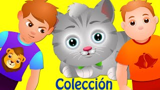 Campana Ding Dong | Canciones Infantiles Populares Colección | ChuChu TV