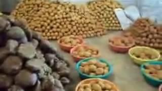 Download Lagu pabrik gula mini Gula Merah Produksi Desa Pamarangan kec.  ,Mesin giling tebu Gratis STAFABAND