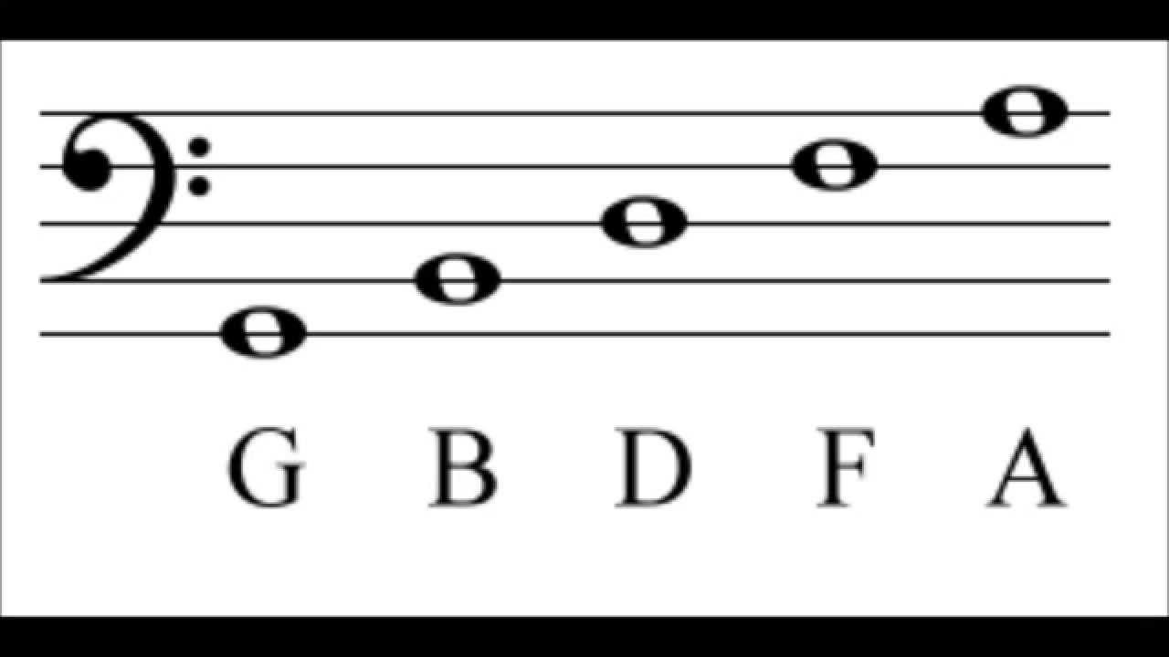 Bass Clef Notes - Music Theory for Parents