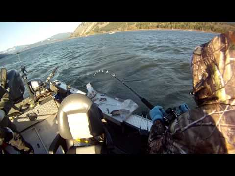 Extreme Sturgeon Fishing