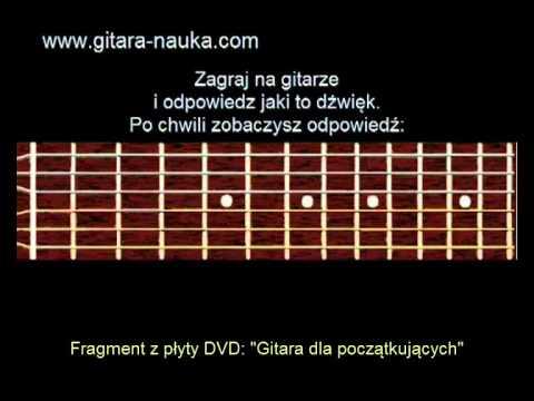 Dla Początkującego Gitarzysty. Ćwiczenia, Dźwięki Na Gitarze