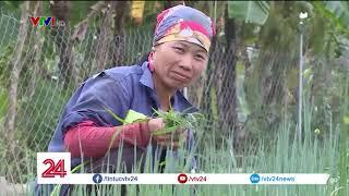 Yên Khánh - Miền quê đáng sống | VTV24