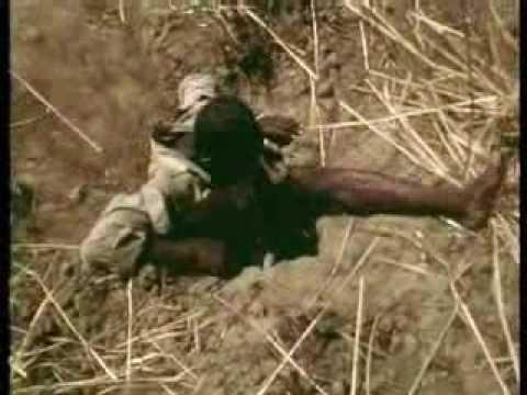 Cazando una Pitón con su cuerpo como Cebo - Les Chasseurs de Pythons