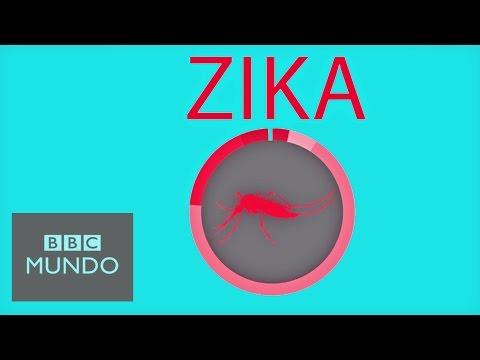 VIDEO: 10 FORMAS DE PROTEGERTE DEL VIRUS DEL ZIKA