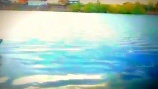 Isla Grant An Accordion Started To Play Corbeanca Lake