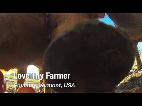 Love Thy Farmer: Organic Farmers in Poultney, Vermont