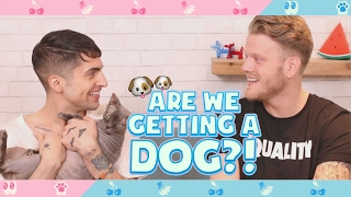 ARE WE GETTING A DOG?!