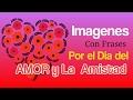 Imagenes Con Frases Por El Dia Del Amor y la Amistad MP3