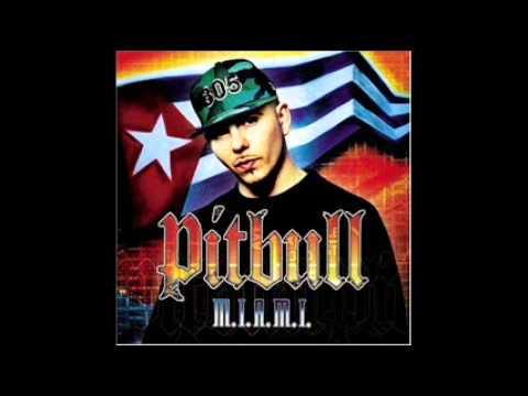 Pitbull - I Wonder