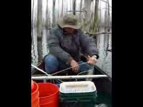 Catfish Yo Yo Fishing (video)