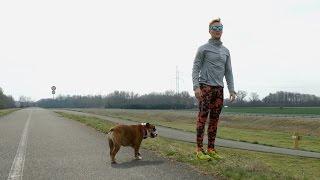 Run Sajfa, run! | VJU.sk