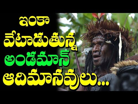 Tribals In Andaman Nicobar Islands I Indian Mystery Islands I rectv mystery