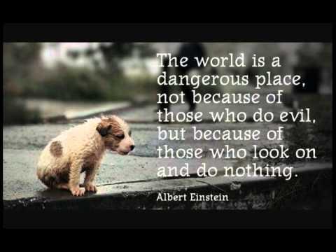 Sad animal quotes