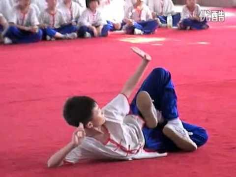 Exhibiciones de la escuela Wushu de internacional de la sociedad civil.