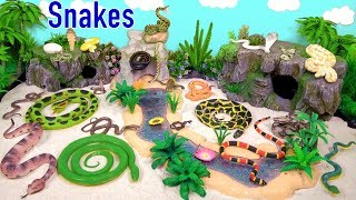 Snakes Serpent Reptile Viper Basilisk Vermin Slithery Nope Ropes 1
