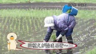 【鳥取県日南町】純度99%の田舎暮らし
