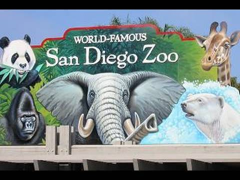 Visiting The San Diego Zoo (in HD)