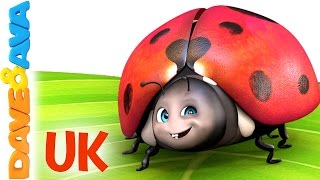 😊 Five Little Ladybirds| the UK Version | Popular Kids Songs from Dave and Ava 😊