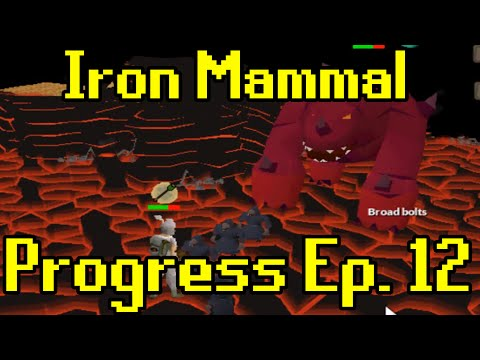 Oldschool Runescape - 2007 Iron Man Progress Ep. 12 | Iron Mammal