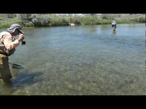 Trout Fly Fishing San Juan River beginner Joe July 2012