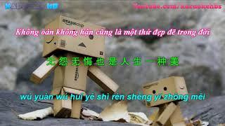 Mưa Trên Cuộc Tình Nhạc Hoa | 珍惜 - 孫露 [ Vietsub + Kara Pinyin ]