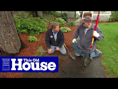 How to Repair an Asphalt Walkway - This Old House