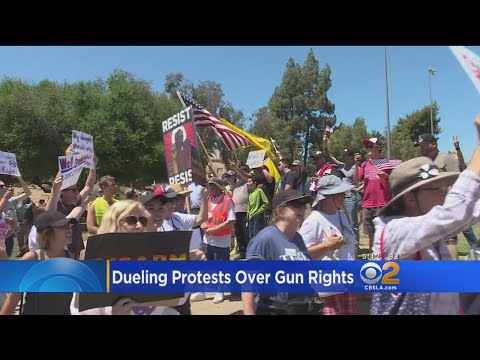 Dueling Protests Over Gun Rights In Orange County