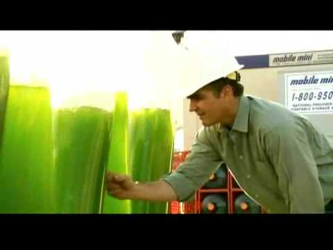 GreenFuel Technologies: Growing Algae
