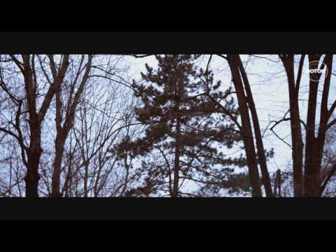 Sonerie telefon » Tom Boxer feat. Antonia – Morena (Official Video)