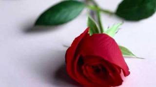 bangla song by SALMA