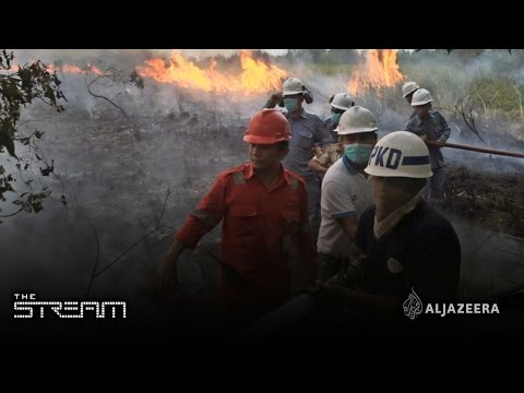 Indonesia up in smoke