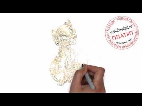 Видео как нарисовать аниме девушку кошку