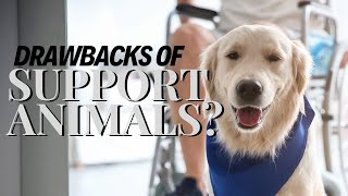 Emotional Support Animals: Are They Making us Emotionally Dependent? 🤔