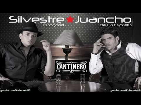 Silvestre Dangond - Mi Propia Historia [Cantinero] - Vallenato 2010*