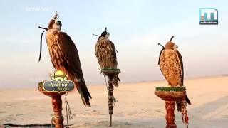 ഗള്ഫ് വീടുകളില് പത്രങ്ങള് എത്തുന്നതെങ്ങനെ?  Arabian Storis Part 3